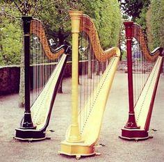 Beautiful Harps.