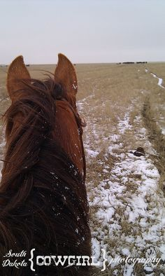 Even in the snow, there's still work to be done on the ranch.