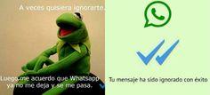 Video: Con memes, protestan contra Whatsapp por las #PalomitasAzules - Aristegui Noticias
