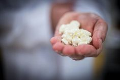 Learning how to make cheese - Photography by David Griffen