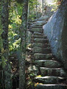 """Dorr Mountain Trail, Acadia National Park- very steep. """"Felt like we were in a Lord of the Rings setting."""" Acadia National Park Hiking, Arcadia National Park, National Parks, Vacation Destinations, Vacation Spots, Vacations, Acadia Maine, Bangor Maine, Stone Steps"""