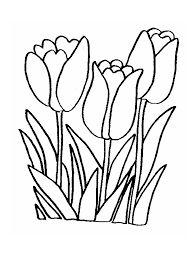 jarne kvety omalovanka - Hľadať Googlom