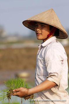 female farmer planting rice in Vietnam. Photo: My Planet Experience, via Flickr