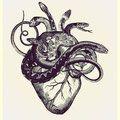 Dessin tatouage coeur et serpents