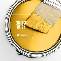 Color of the Month: English Daisy - Colorfully, BEHR May bathes the outdoors in warm, welcoming suns Interior Paint Colors, Paint Colors For Home, Interior Design, Living Room Colors, Living Room Decor, Living Rooms, Wall Colors, House Colors, Yellow Paint Colors