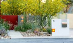 Clean, modern, warm and drought tolerant