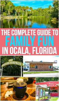 Looking for great family travel destinations? Ocala, Florida is perfect for families with kids who want to stay in the USA or who want to travel on a budget! And this guide has all of the tips and ideas you need for the perfect weekend in #OcalaMarion! #ad