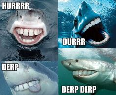 As many of you know this week is Shark Week. Here's a little dental humor Shark Week style for you! 9gag Funny, Haha Funny, Funny Cute, Funny Memes, Teeth Funny, Funny Stuff, Memes Humor, Super Funny, Hilarious Memes