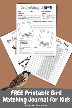 A free printable for nature study with kids. This bird watching journal is ideal for using throughout the year to record birds seen as well as start to collect together a fact file of the birds in your local area. Ideal for homeschooling, classroom and parents. Preschool Science Activities, Nature Activities, Science Experiments Kids, Science For Kids, Activities For Kids, Science Ideas, Great Backyard Bird Count, Third Grade Science, Book Suggestions