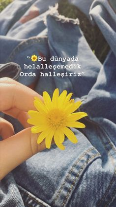 Grunge Photography, Tumblr Photography, Ludwig Xiv, Flower Tattoo Drawings, Mickey Mouse Wallpaper, Tumblr Art, Videos Funny, Cool Words, Instagram Story
