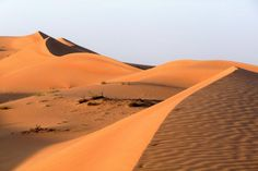 Oman Rundreisen und Hotels | Jetzt Urlaub buchen |Tai Pan Oman Hotels, Rub' Al Khali, Sultan Qaboos, Salalah, Top Hotels, Resort Spa, Dubai, Arab World, Travel Destinations