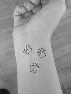 6 empreintes de chat / pistes traces de chat / tatouages