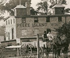 Wines of Canada the history of Pelee Island Wineries. Wine Safari, Windsor Ontario, Essex County, Wine Case, Lake Erie, History Photos, Local History, Michigan, Past