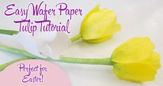 When you are in a hurry, these wafer paper tulips will make a big visual impact, without a big time commitment. Wafer Paper Flowers, Wafer Paper Cake, Sugar Flowers, Decoupage Tutorial, Cake Tutorial, Water Paper, Cake Models, Cakes Plus, American Cake