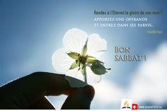 Bon Sabbat, Sabbats, Illustration, Mother In Law, Psalm 96, Scriptures, Biblical Verses, God, Bonjour