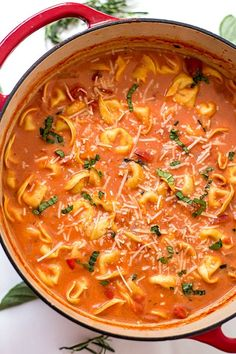 The EASIEST one-pot tomato tortellini soup made with fresh herbs and three-cheese tortellini! So easy you can even make it in your slow cooker!