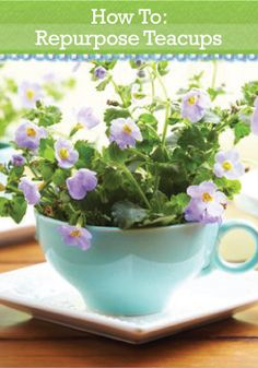 Repurpose old teacups into 7 DIY crafts for your garden.