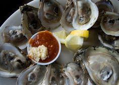 Oysters [10 best places to eat in Portland, ME]