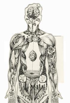 Sara Suppan's Human Anatomical Manikin