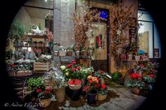 Shop in Saronno - Christmas Eve