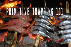 Primitive Trapping 101