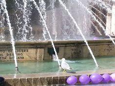 Primo maggio, palloncini nella fontana di De Ferrari #Genova per ricordare le vittime della #crisi economica. Foto di Alessio Zaina