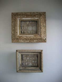seashells framed in old frames... need to do this w vacation shells the kids find each year