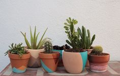 DIY Painted Terra Cotta Pots ...