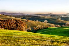 Landscape   Tuscany   Countryside