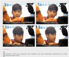 Zayn's face in the last one. seriously the best thing ever