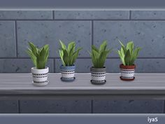 Plant in an simple and adorable pot. Part of North Star set. 4 color variations. Category: Decorative - Plant.  Found in TSR Category 'Sims 4 Plants'