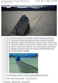 Its a rock