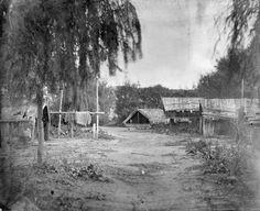 This eerie photograph shows a kainga at Kaiwhaiki