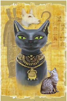 Egyptian Era, Egyptian Cat Goddess, Egyptian Symbols, Cats In Ancient Egypt, Egypt Cat, Aliens, Egypt Museum, Cat Statue, Gods And Goddesses