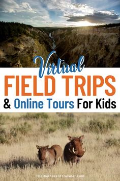 Looking for ways to keep young minds busy? Take a virtual field trip with these resources! Aquarium & zoo webcams, online museum tours, safari live feeds, kid-friendly travel documentaries, geography books, game ideas, links for travel-related learning & play at home. Includes Smithsonian museums, national parks, history sites, music exploration, science & art projects, and ways to explore other cultures! free virtual field trips elementary for kids | free virtual field trips for kids Travel Fund, Travel Tours, Travel Themes, Travel Advice, Travel Guides, Virtual Museum Tours, Virtual Tour, Africa Destinations, Travel Destinations