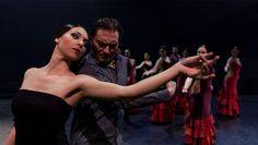 Mediterráneo estrenará Terra en el Teatre Principal de Valencia