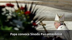 Papa convoca Sínodo Pan-amazônico