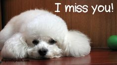 I MISS YOU!!!