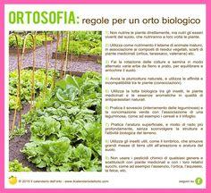 Regole per un orto biologico