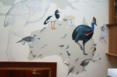Jane Kim paints a giant mural at the Cornell Lab of Ornithology showcasing the evolution of birds.