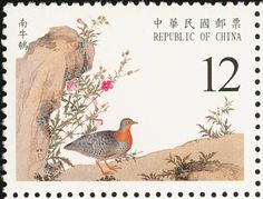 Yellow-legged Buttonquail stamps - mainly images - gallery format