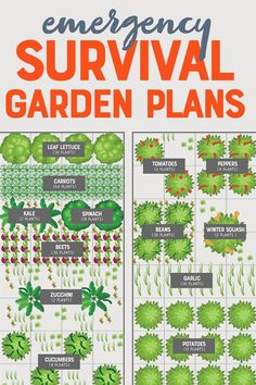 Cheap and Easy Emergency Vegetable Garden - Even the most robust stockpile runs out, but your ability to grow your own food never will. Here's how to plant a quick emergency vegetable garden, cheap. Source by wholefully - Planting Potatoes, Planting Vegetables, Growing Vegetables, How To Plant Vegetables, Veggies, Vegetable Garden Planning, Vegetable Garden Design, Vegetable Gardening, Gardening Books