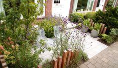 Front Gardens, Small Gardens, Outdoor Living, Outdoor Decor, St Joseph, Abandoned Buildings, Tropical Garden, Garden Inspiration, Interior And Exterior