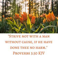 Proverbs 3:30 KJV