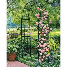 Weather-proof iron arch with a French accent, perfect support for climbing vines, such as roses, clematis, wisteria. Excellent outdoor garden or landscape piece. Arch Trellis, Rose Trellis, Climbing Flowers, Climbing Vines, Rose Garden Design, Spring Hill Nursery, Garden Arches, English Country Gardens, Metal Garden Art