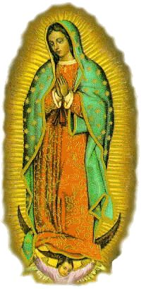 Virgencita de Guadalupe  Muchas Felicidades y Gracias por todas tu bendiciones Virgencita Hermosa, te pedimos nos sigas cuidando bajo tu manto. Muchas Felicidades a las Lupitas!!! :)