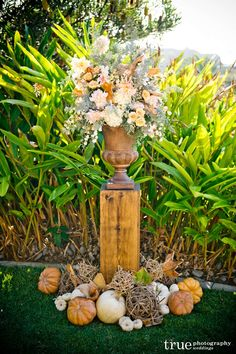 asmithfloral.com, fall wedding...seaside in San Diego