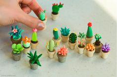 polymer clay cati & succulents
