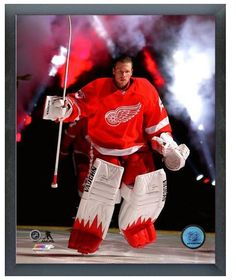 """Jimmy Howard 2013-14 Detroit Red Wings - 11"""" x 14"""" Photo in a Glassless Frame"""