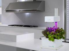 Arredare facile ~ Il coltivatore idroponico per la realizzazione del tuo orto in casa